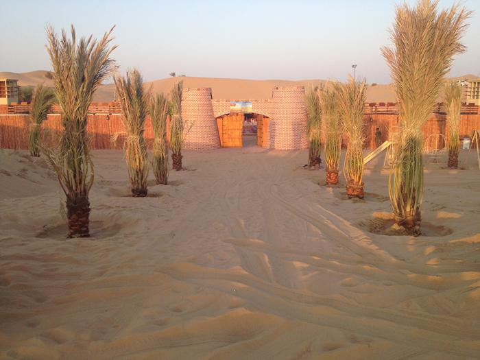 Complete Details of Desert sefari