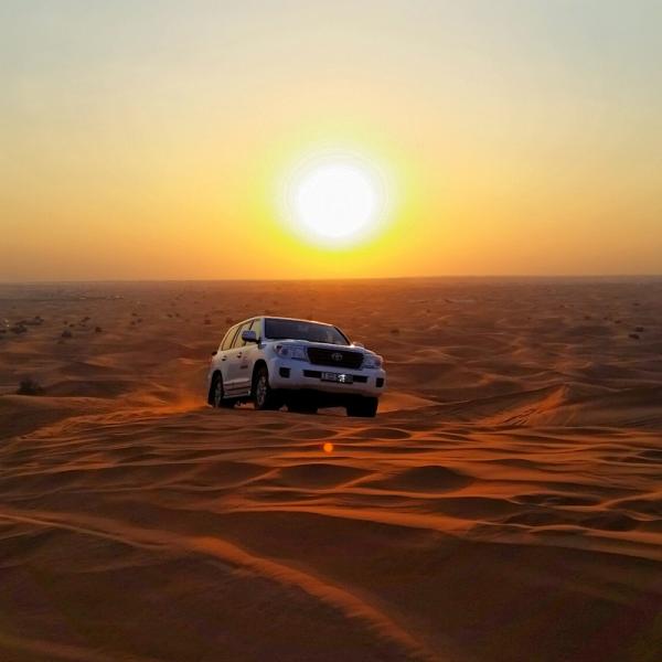 VIP Desert Safari Tour