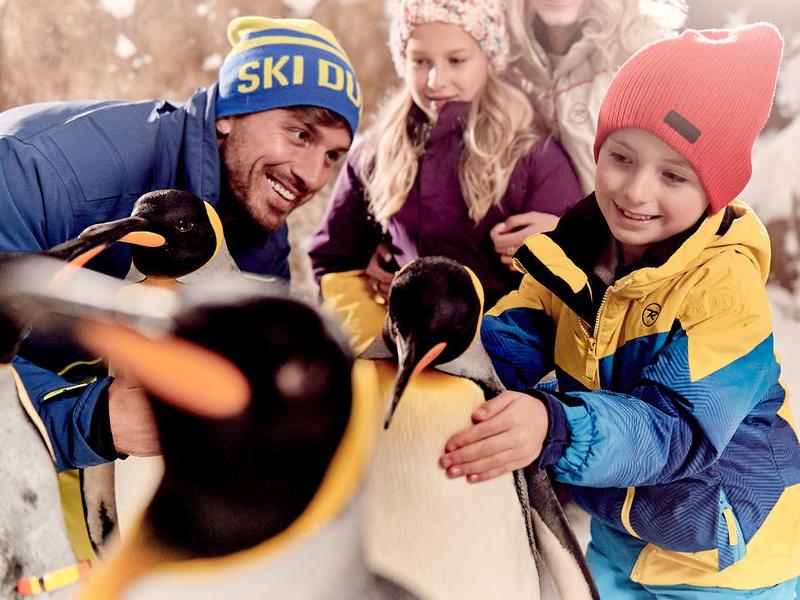 Ski Dubai Snow Classic Pass: Unlimited Rides